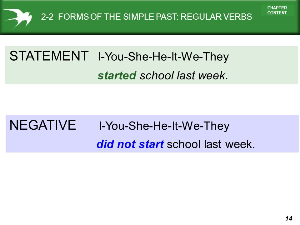 STATEMENT NEGATIVE I-You-She-He-It-We-They started school last week.