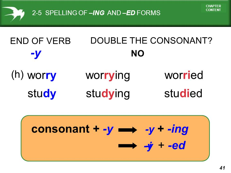 -y worry worrying worried study studying studied consonant + -y (h)