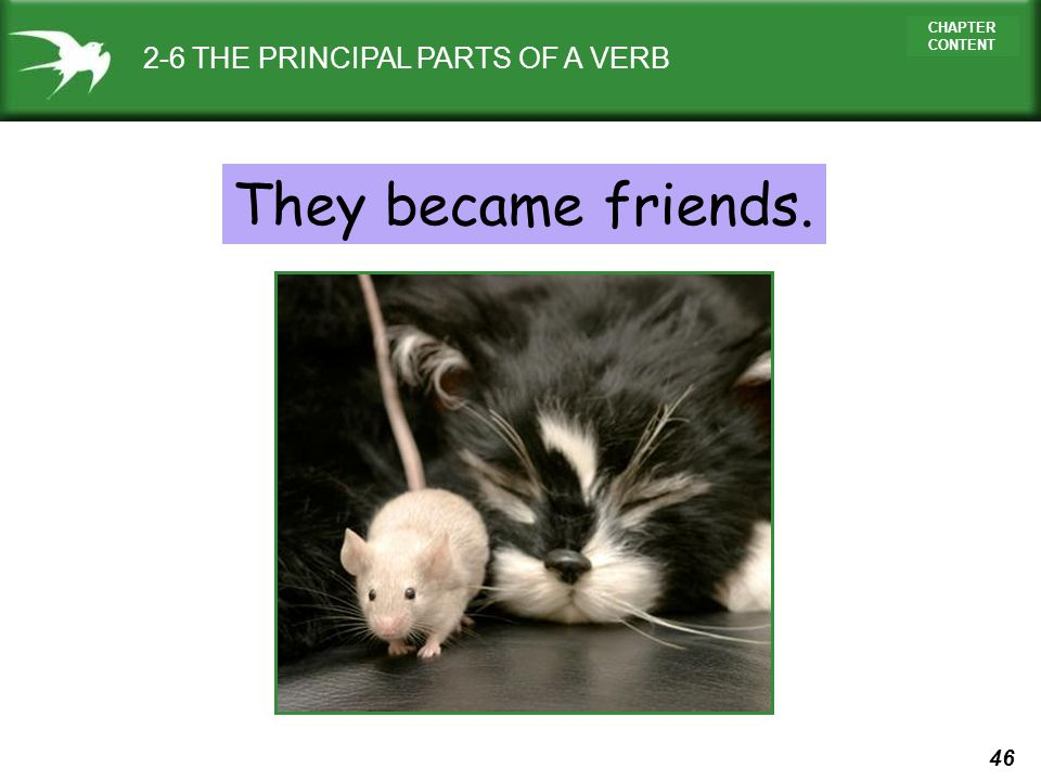 2-6 THE PRINCIPAL PARTS OF A VERB
