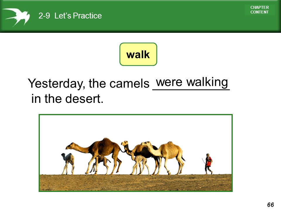 Yesterday, the camels ___________ in the desert. were walking