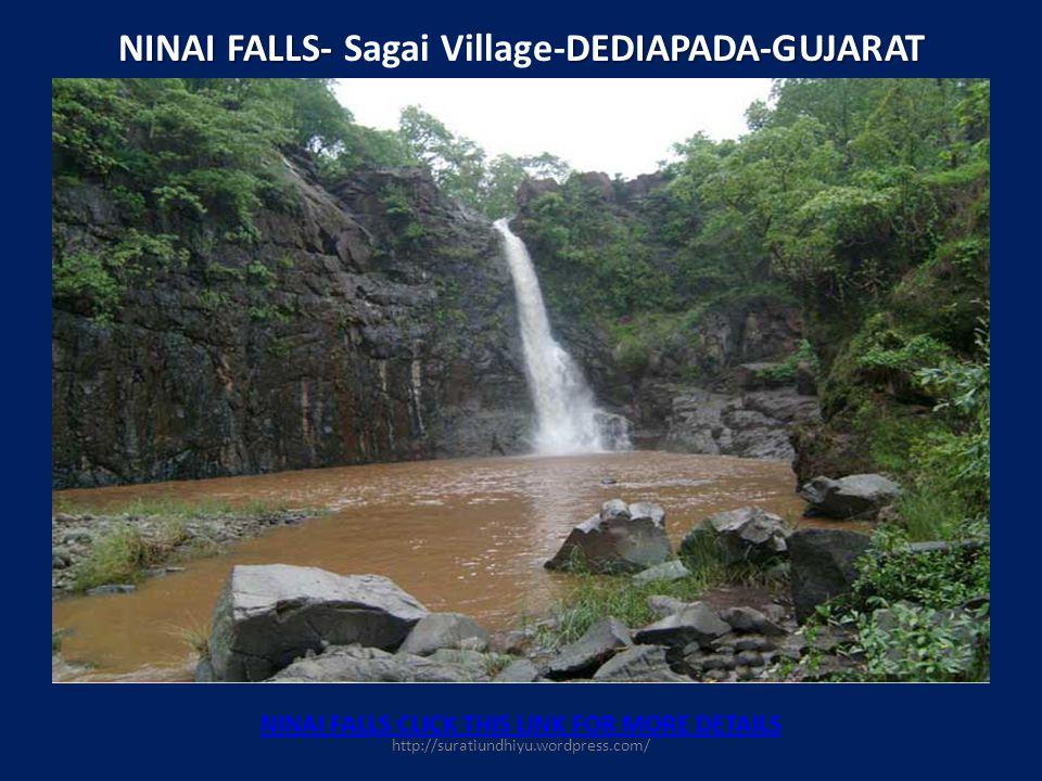 NINAI FALLS- Sagai Village-DEDIAPADA-GUJARAT