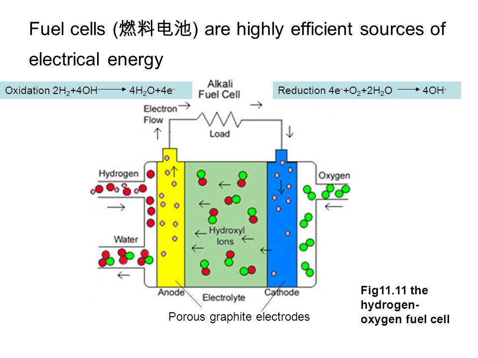 Fuel cells (燃料电池) are highly efficient sources of electrical energy