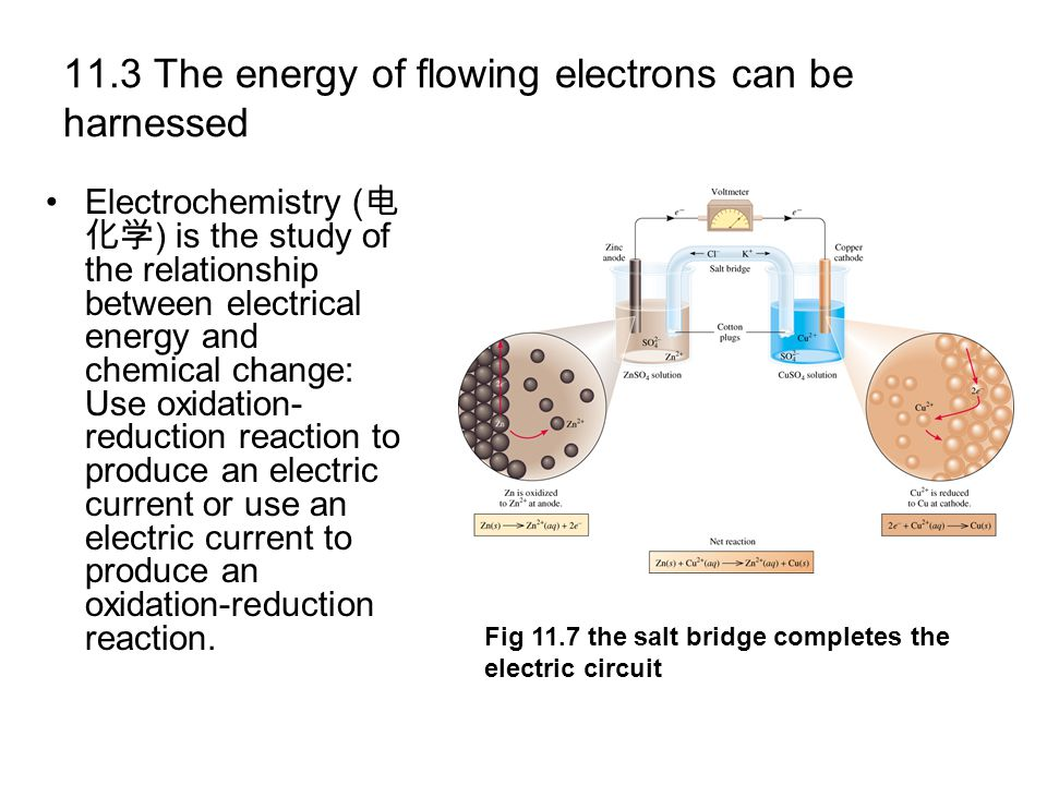 11.3 The energy of flowing electrons can be harnessed