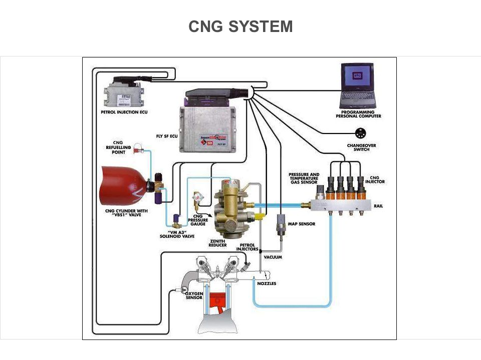 CNG SYSTEM Concetti Base dei Sistemi Sequent 6