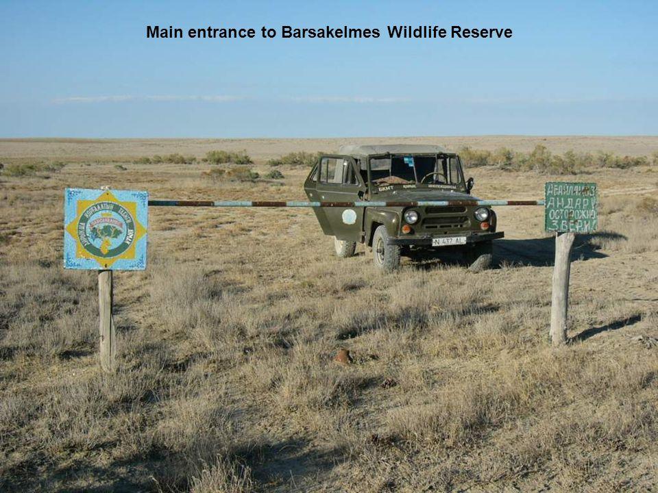 Main entrance to Barsakelmes Wildlife Reserve
