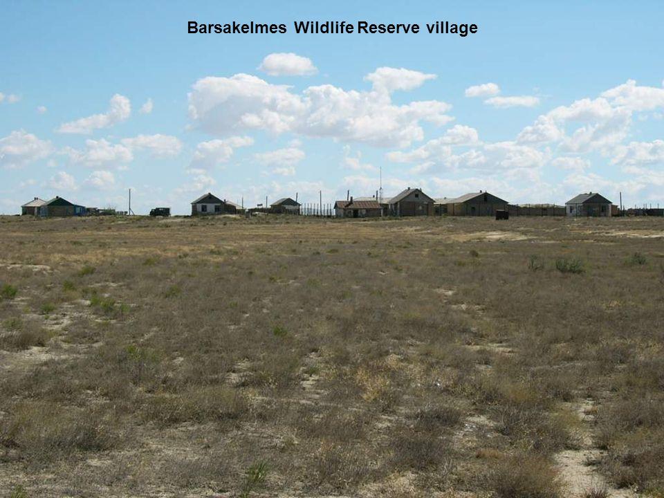 Barsakelmes Wildlife Reserve village