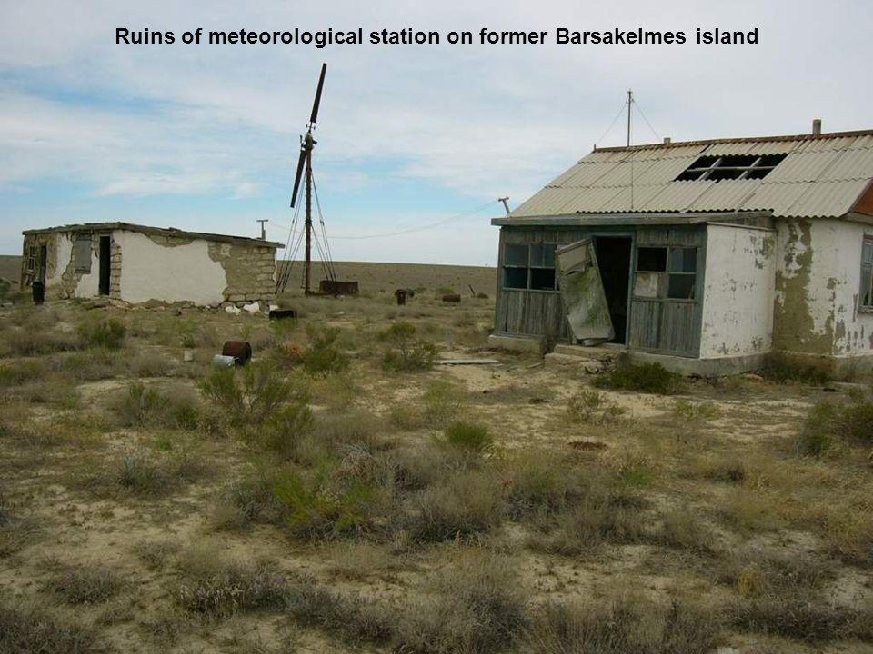 Ruins of meteorological station on former Barsakelmes island