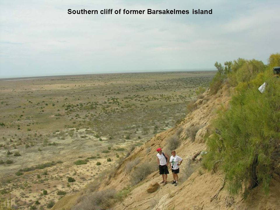 Southern cliff of former Barsakelmes island