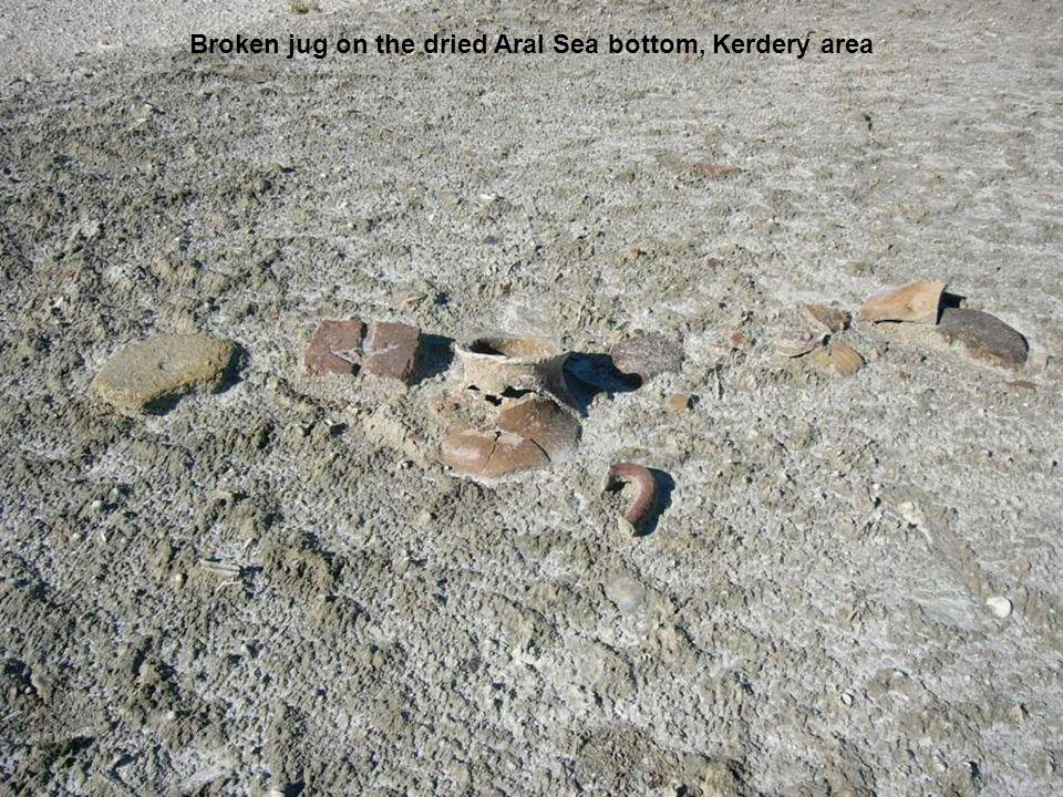 Broken jug on the dried Aral Sea bottom, Kerdery area