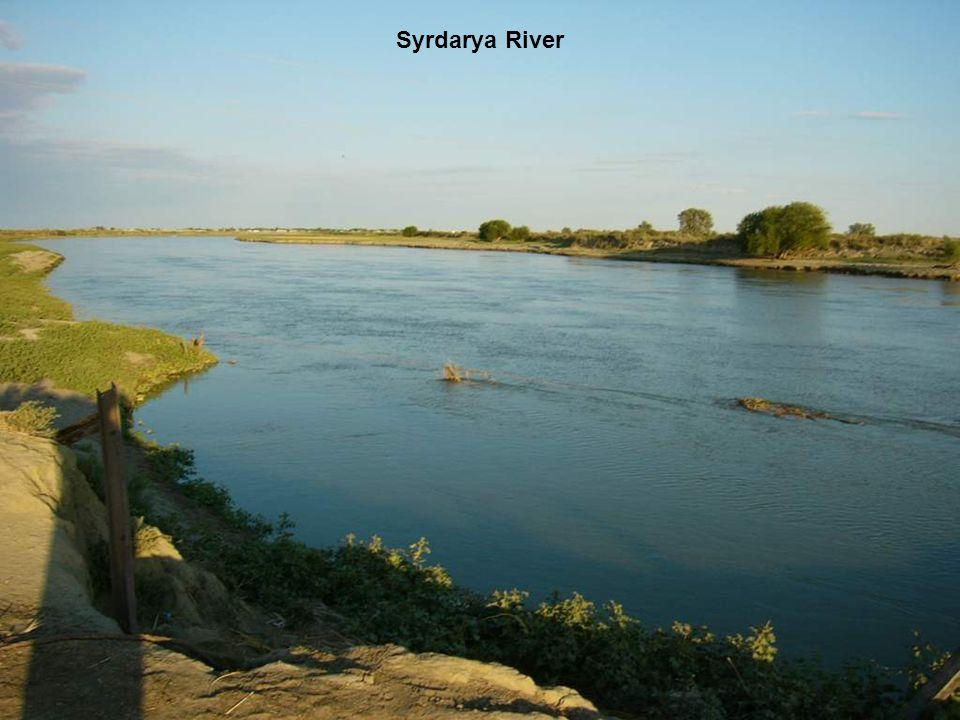 Syrdarya River