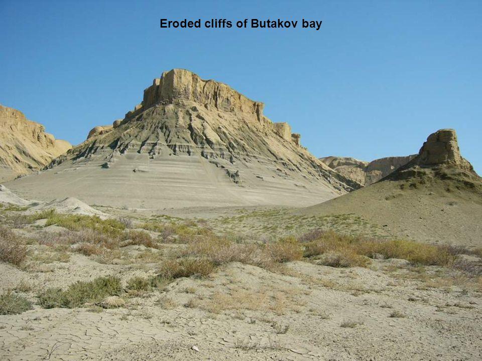 Eroded cliffs of Butakov bay