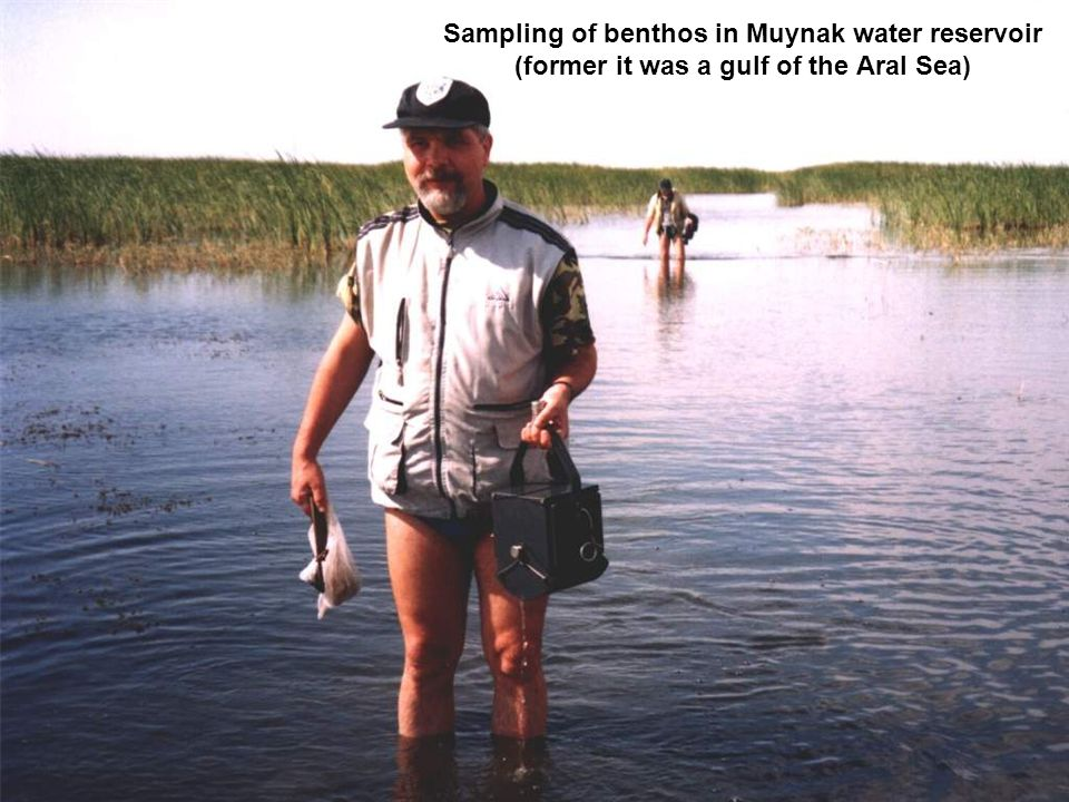 Sampling of benthos in Muynak water reservoir (former it was a gulf of the Aral Sea)