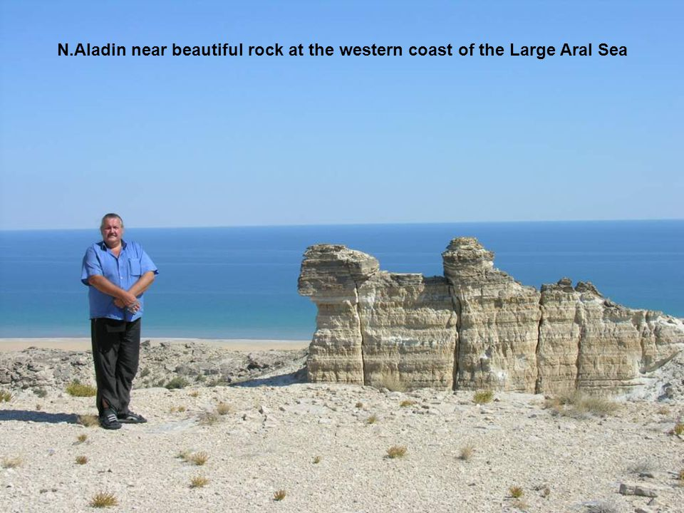 N.Aladin near beautiful rock at the western coast of the Large Aral Sea