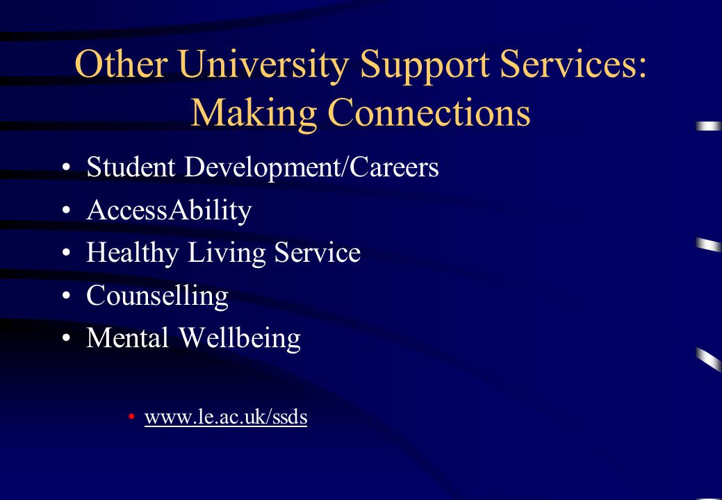 Other University Support Services: Making Connections