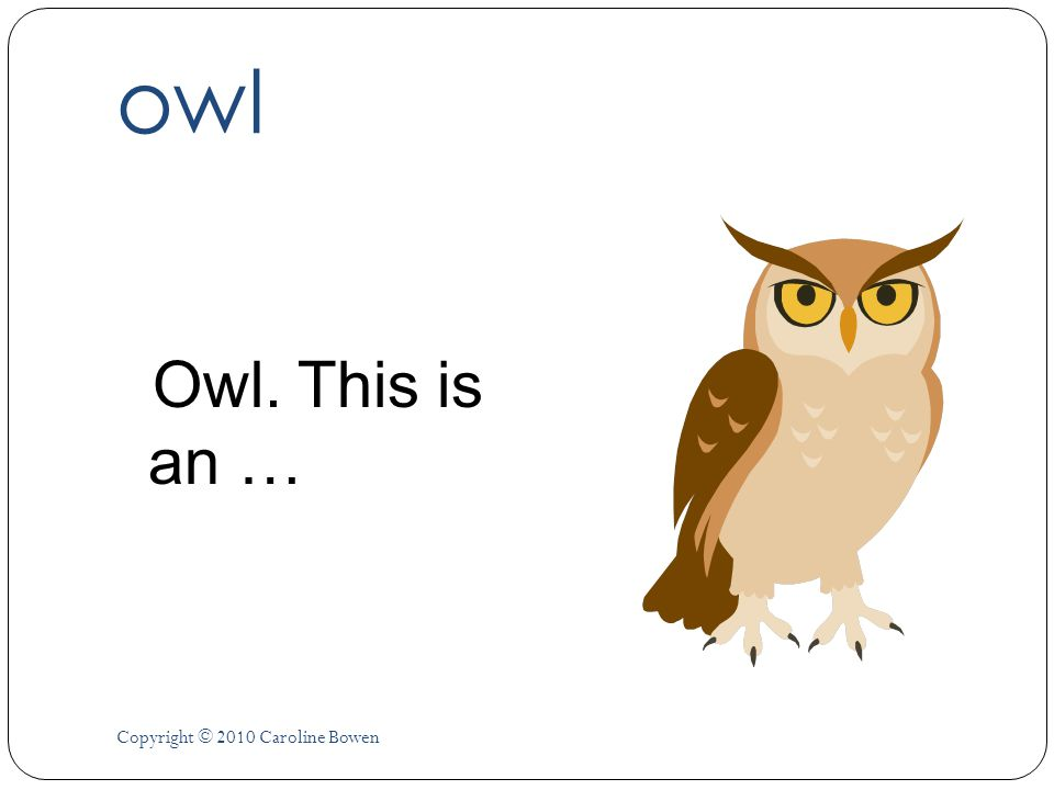 owl Owl. This is an … Copyright © 2010 Caroline Bowen