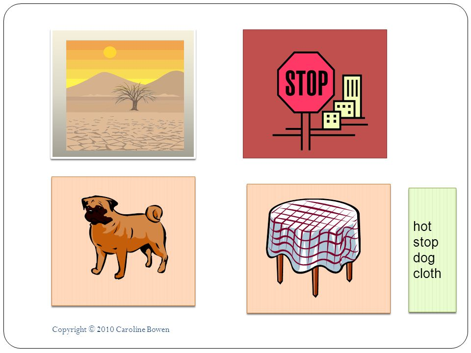 hot stop dog cloth Copyright © 2010 Caroline Bowen