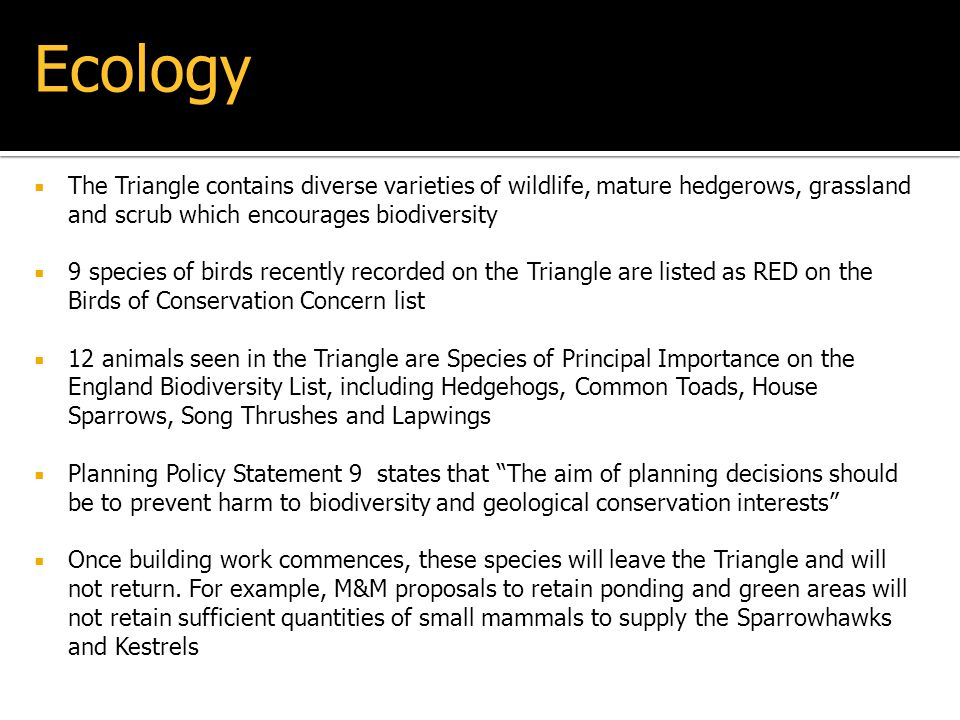Ecology The Triangle contains diverse varieties of wildlife, mature hedgerows, grassland and scrub which encourages biodiversity.