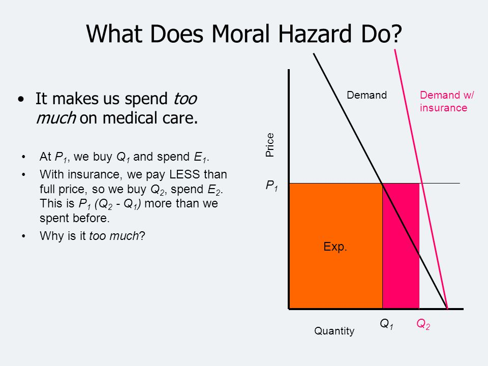 What Does Moral Hazard Do