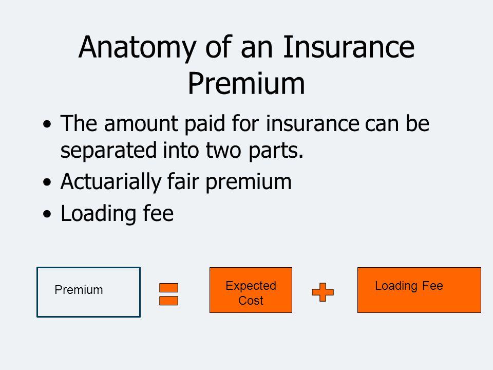 Anatomy of an Insurance Premium