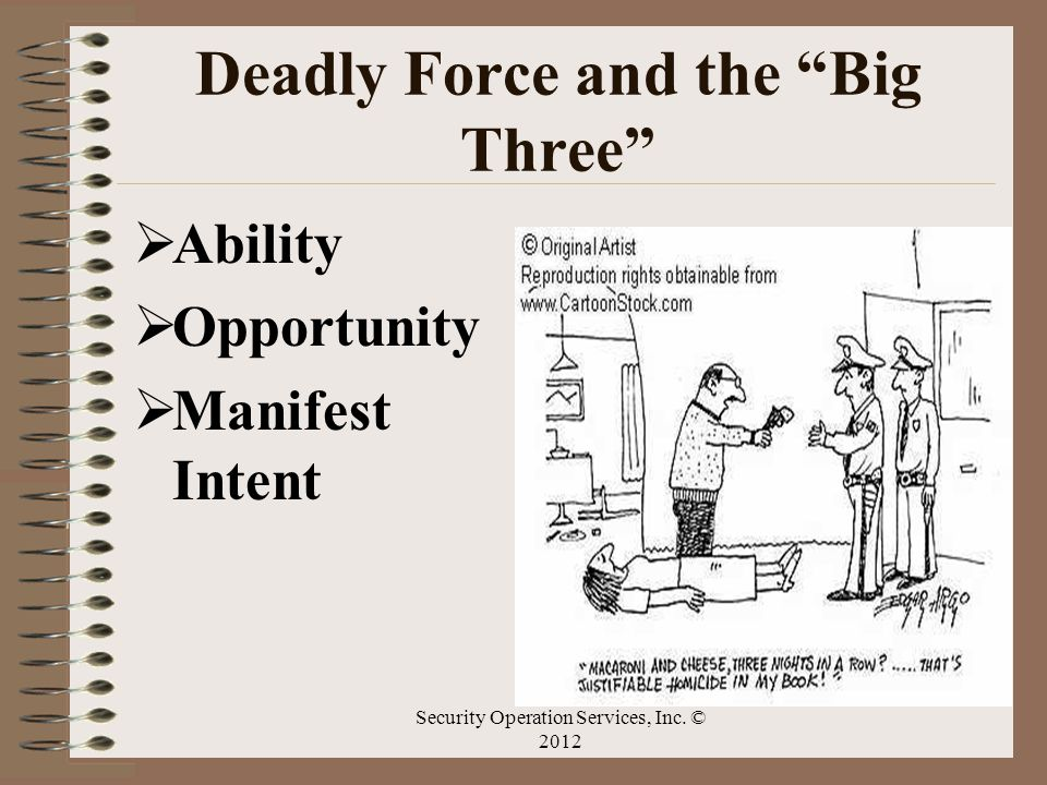 Deadly Force and the Big Three