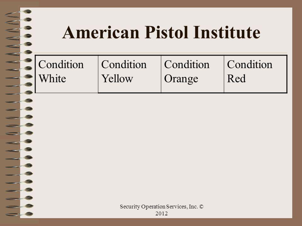 American Pistol Institute