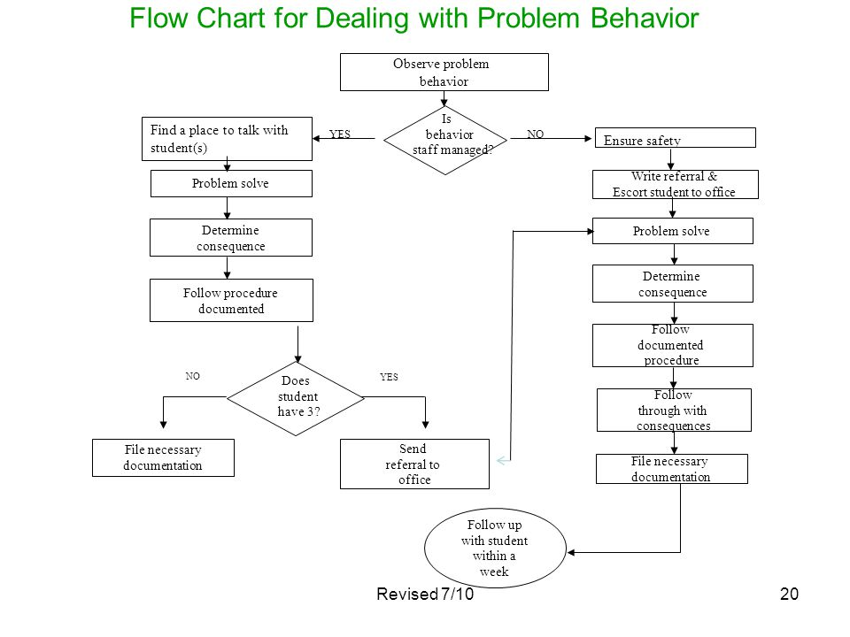 Flow Chart for Dealing with Problem Behavior