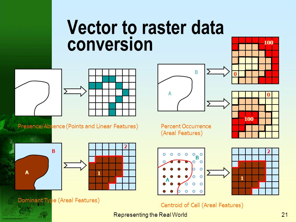 Vector to raster data conversion