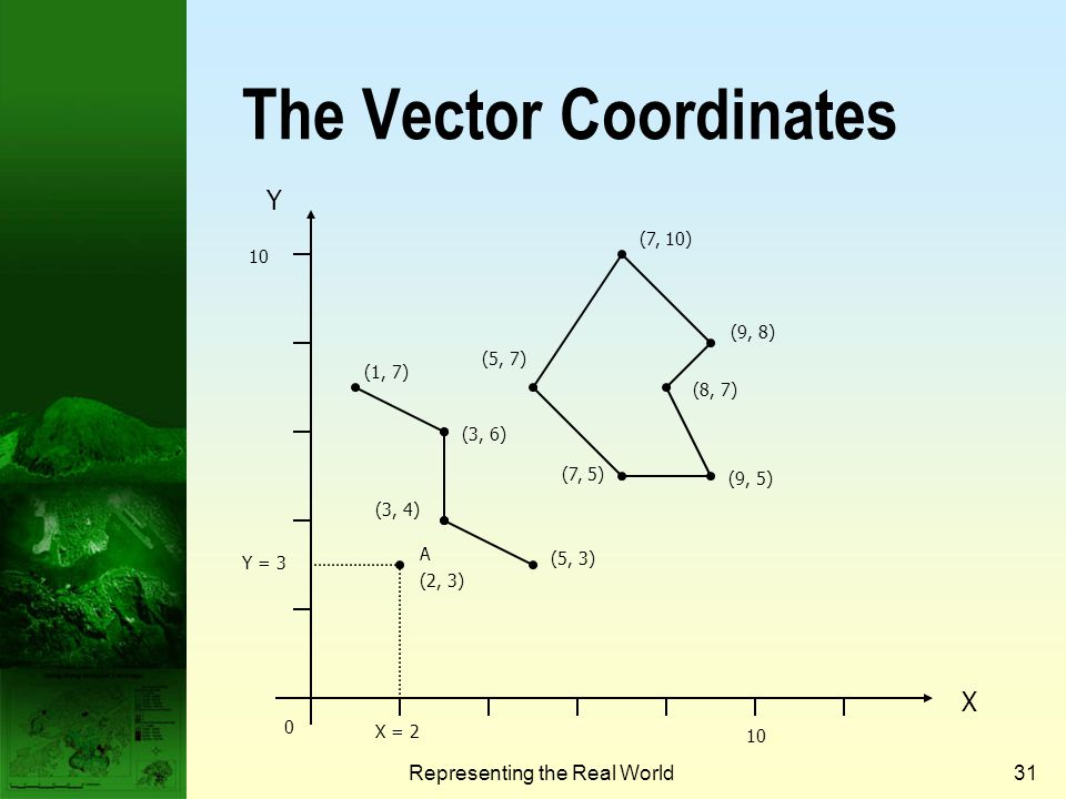 The Vector Coordinates
