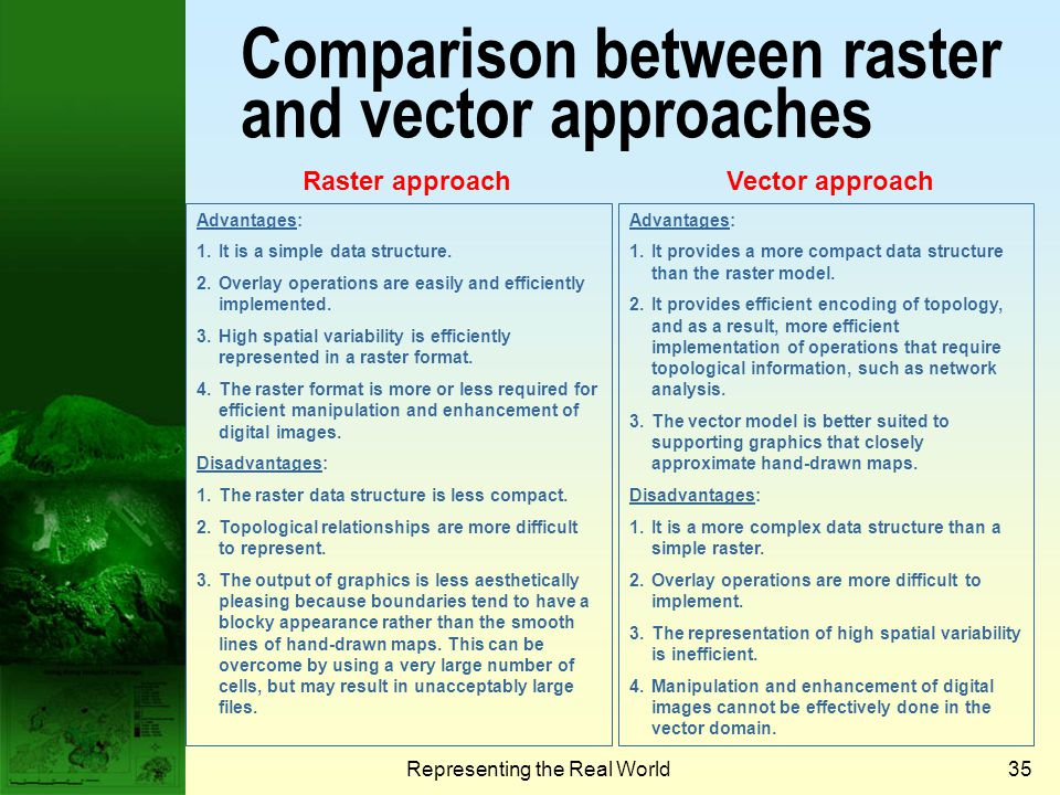 Comparison between raster and vector approaches
