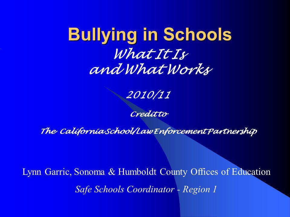 Bullying in Schools What It Is and What Works 2010/11