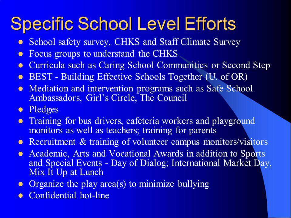 Specific School Level Efforts