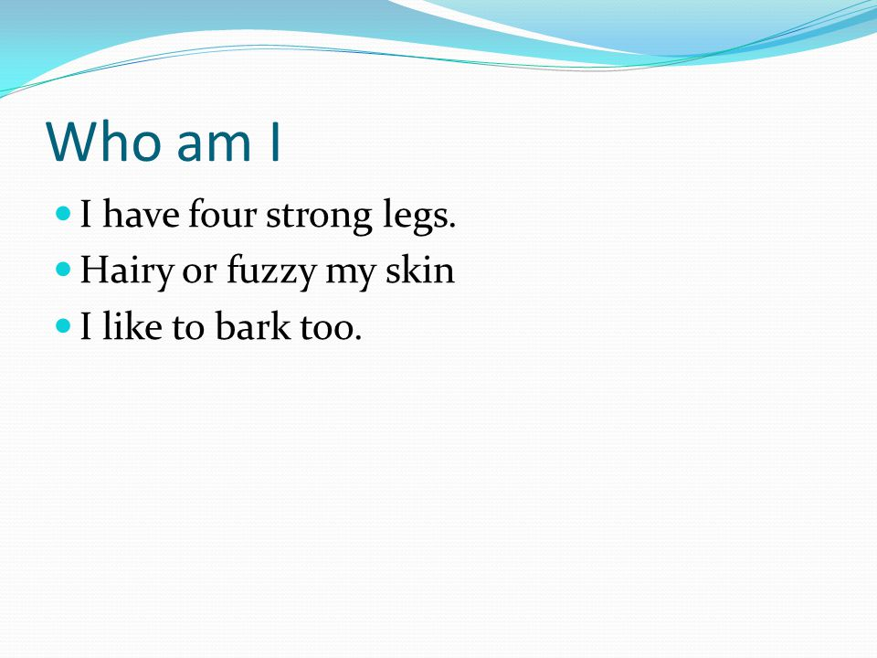 Who am I I have four strong legs. Hairy or fuzzy my skin