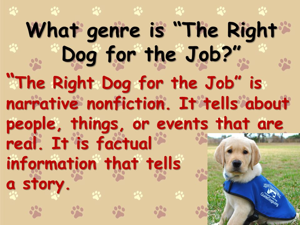 What genre is The Right Dog for the Job