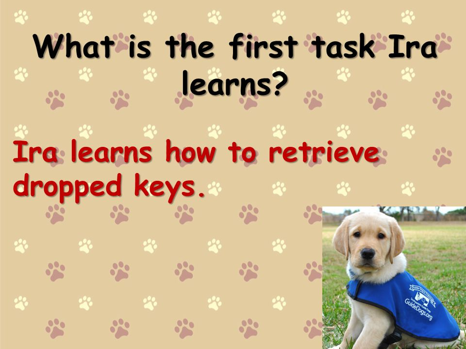 What is the first task Ira learns