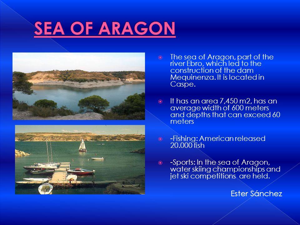 SEA OF ARAGON Ester Sánchez