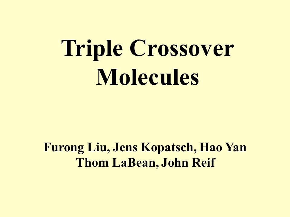 Triple Crossover Molecules Furong Liu, Jens Kopatsch, Hao Yan