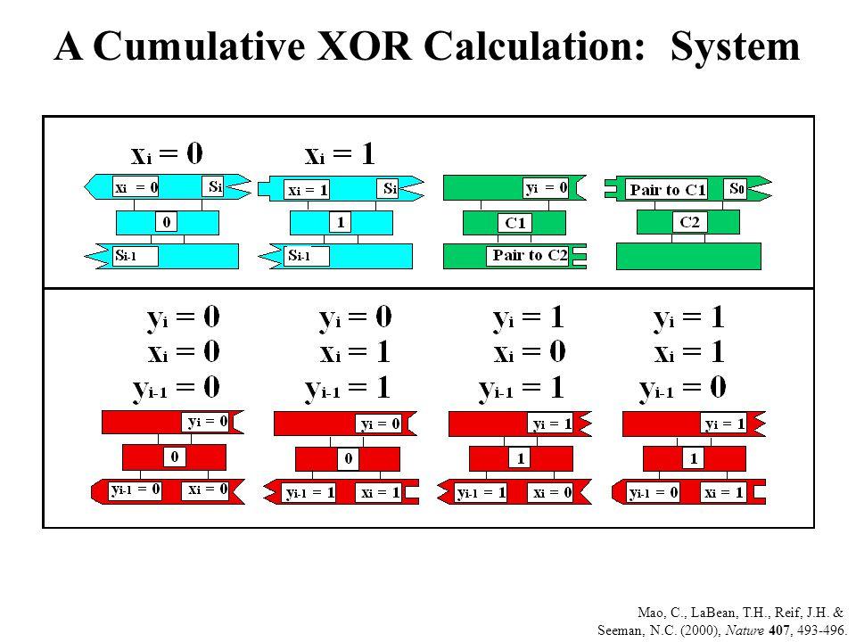 A Cumulative XOR Calculation: System