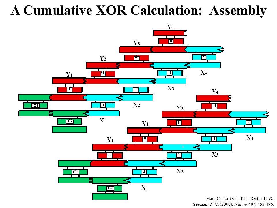 A Cumulative XOR Calculation: Assembly