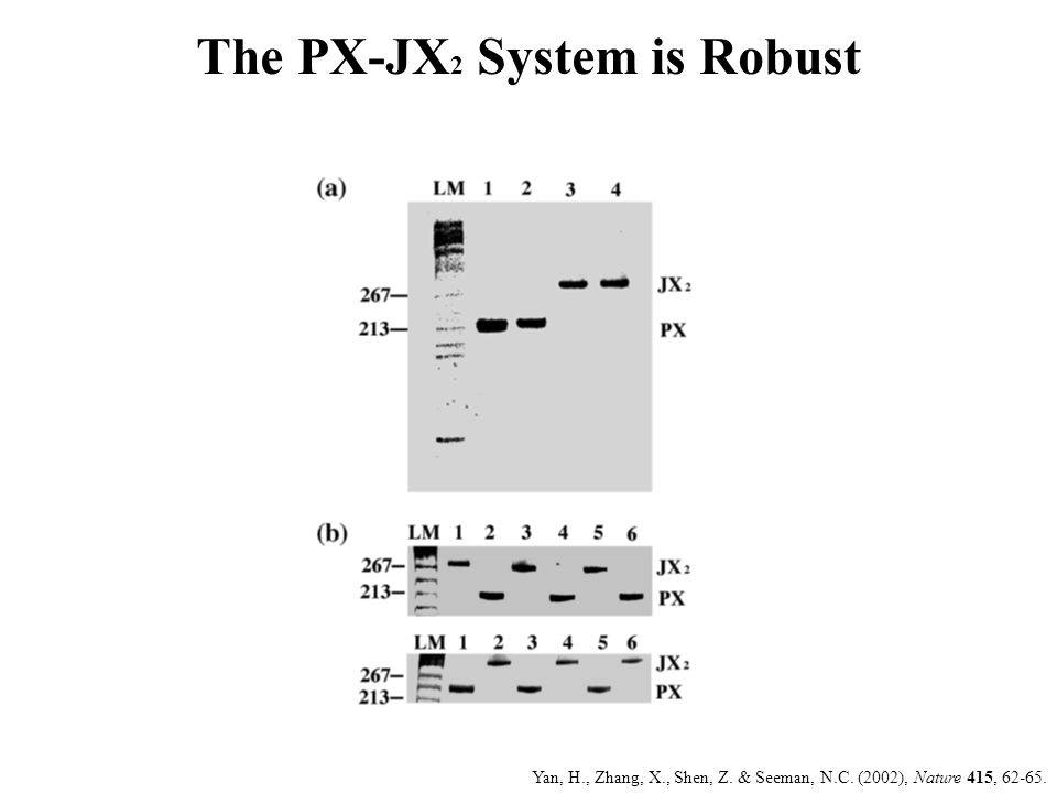 The PX-JX2 System is Robust