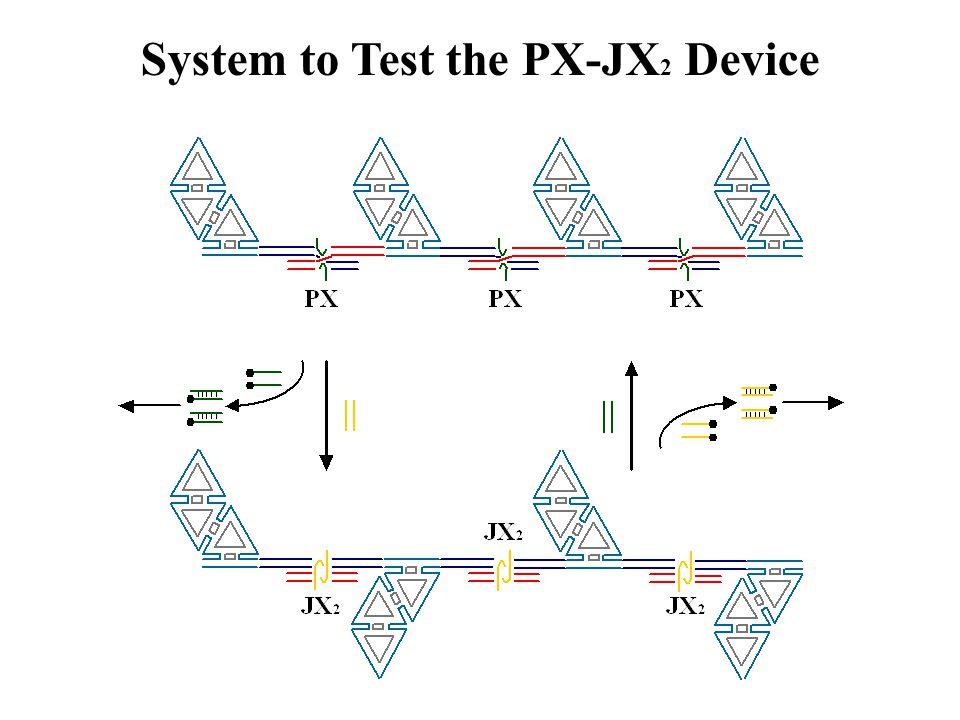 System to Test the PX-JX2 Device