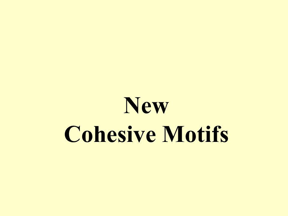 New Cohesive Motifs