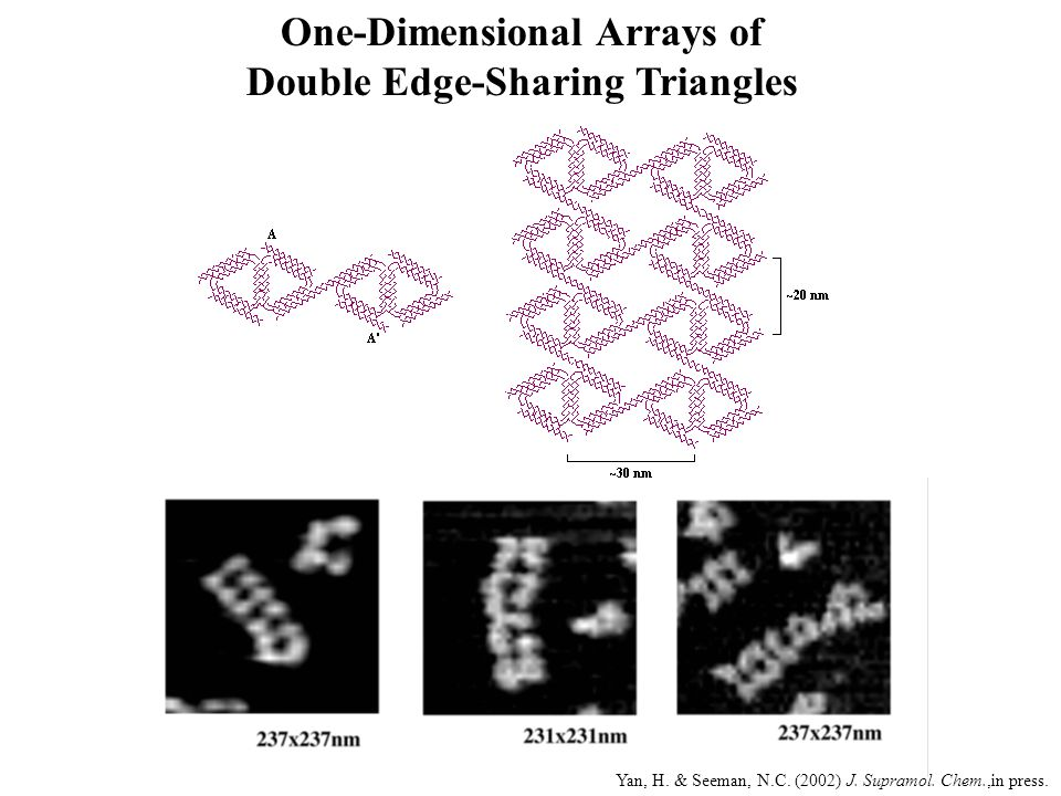 One-Dimensional Arrays of Double Edge-Sharing Triangles
