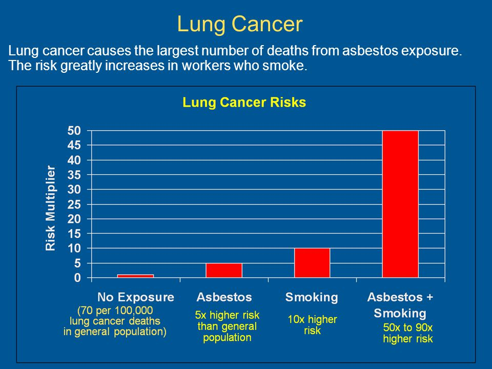 Lung Cancer Lung cancer causes the largest number of deaths from asbestos exposure.