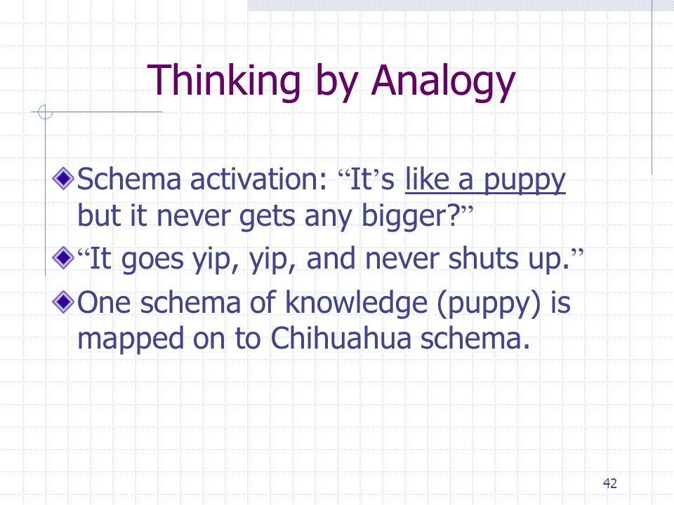 Thinking by Analogy Schema activation: It's like a puppy but it never gets any bigger It goes yip, yip, and never shuts up.