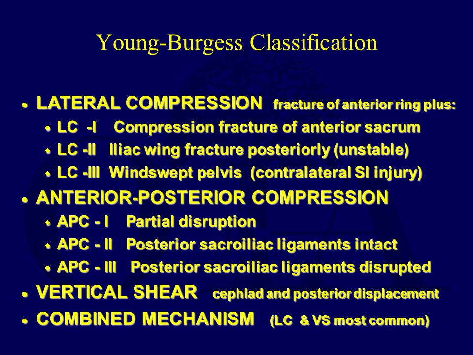 Young-Burgess Classification
