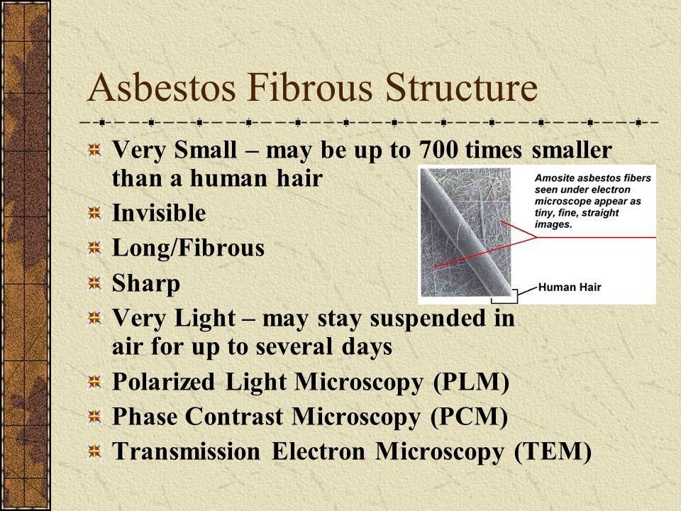 Asbestos Fibrous Structure