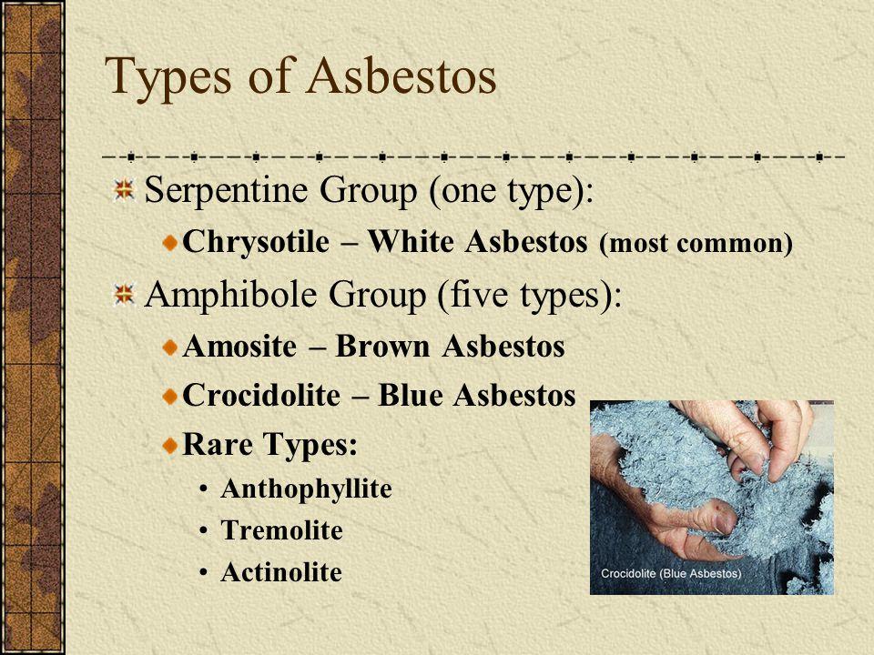 Types of Asbestos Serpentine Group (one type):