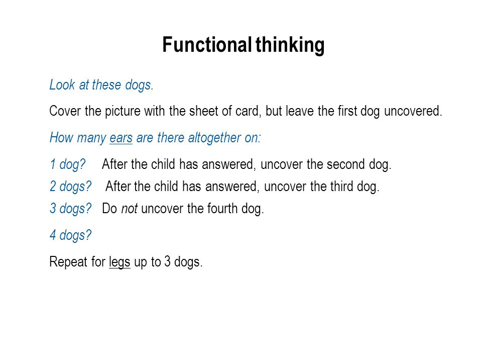 Functional thinking Look at these dogs.