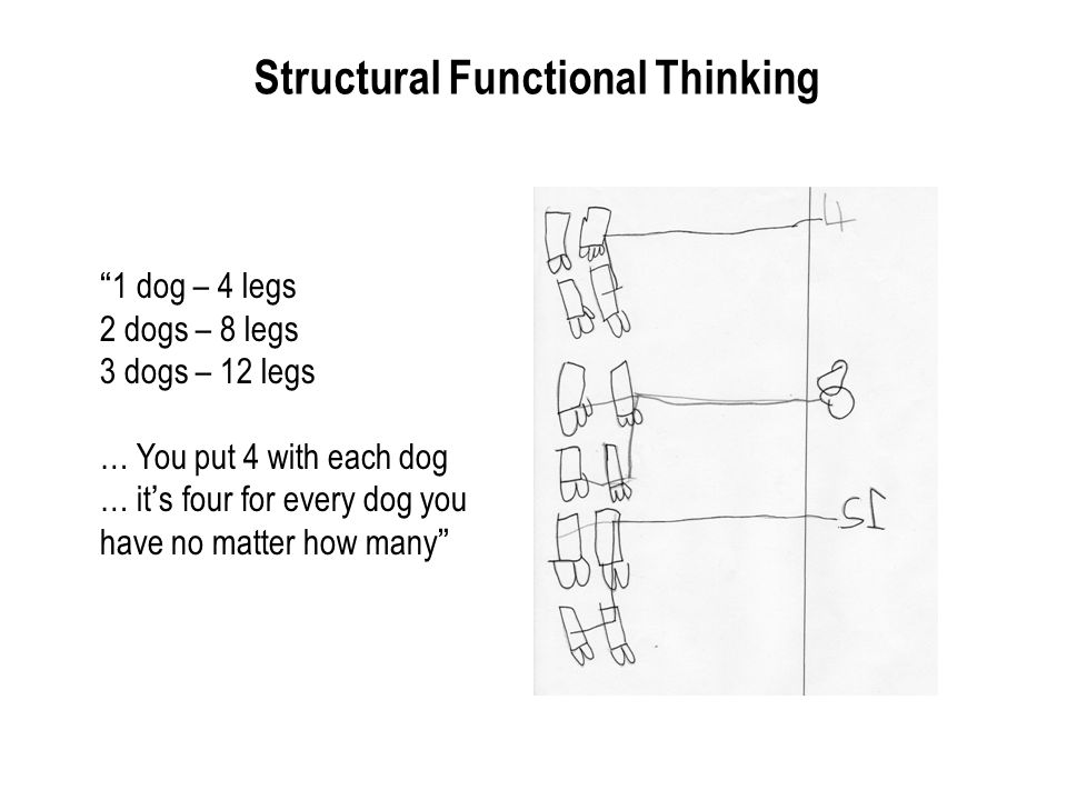 Structural Functional Thinking