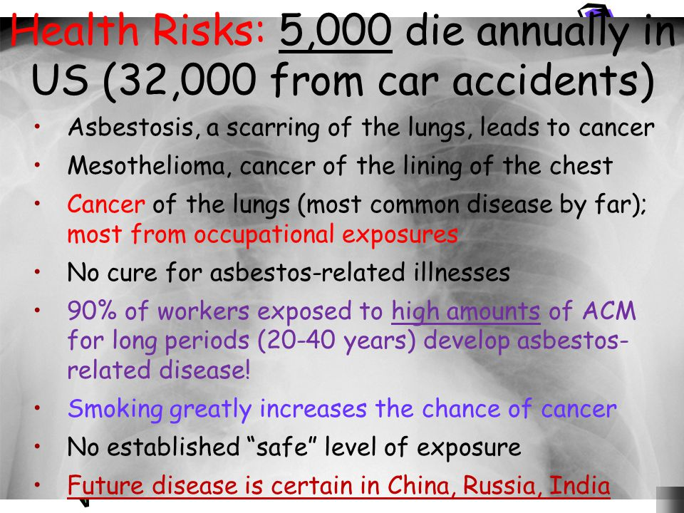 Health Risks: 5,000 die annually in US (32,000 from car accidents)